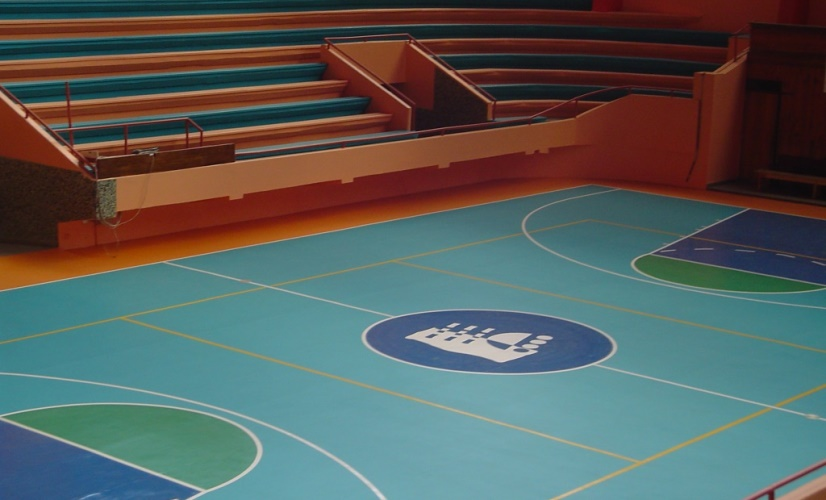 Sport vinyl flooring - Basketball flooring - Sportex